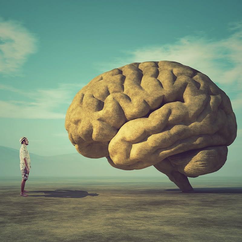 mental health, graduate school, community, PhD Balance, Susanna L Harris